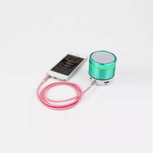 Standard Aux Cable (1)